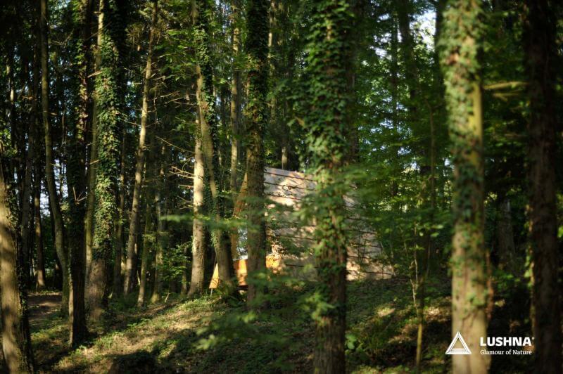 lushna villa green cabin glamping