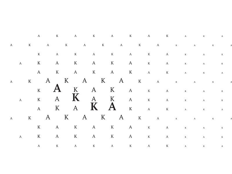 Studio Akka